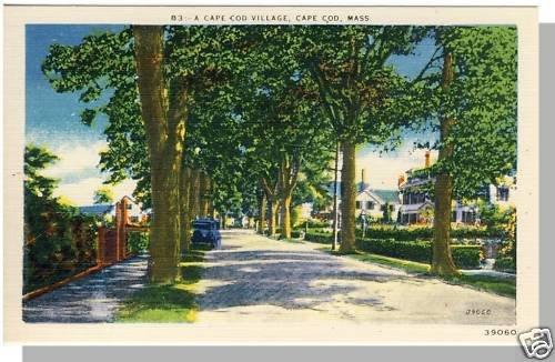 Striking CAPE COD, MASS/MA POSTCARD, Village, 1940's?