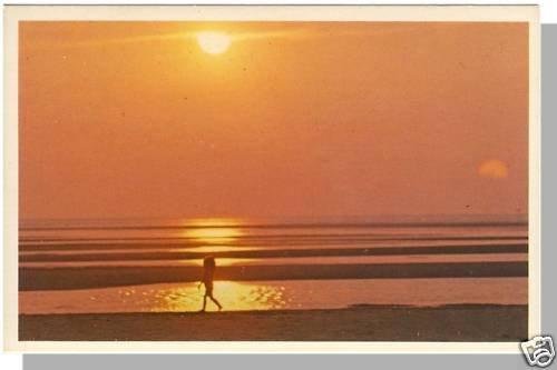 Spectacular CAPE COD, MASS/MA POSTCARD, Sunset/Beach