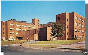 STORRS, CONN/CT POSTCARD,  University Of Connecticut