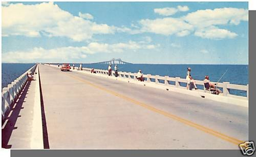 TAMPA BAY, FLORIDA/FL POSTCARD, Sunshine Skyway Bridge