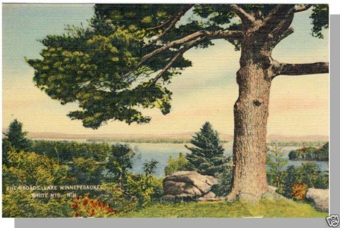 WINNEPESAUKEE, NEW HAMPSHIRE/NH POSTCARD, Broads Lake