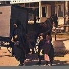 PENNSYLVANIA DUTCH COUNTRY, PA POSTCARD, Amish Family