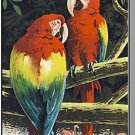 Rare MIAMI, FLORIDA/FL BROCHURE, Parrot Jungle,1960's?