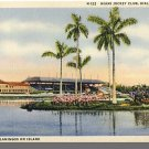 MIAMI, FLORIDA/FL POSTCARD, Hialeah Club/Flamingoes