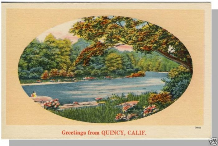 Beautiful QUINCY, CALIFORNIA/CA POSTCARD, Tranquil Lake
