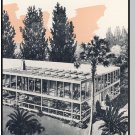 PLAZA MOTEL BROCHURE, St Petersburg, Florida/FL,1950's?