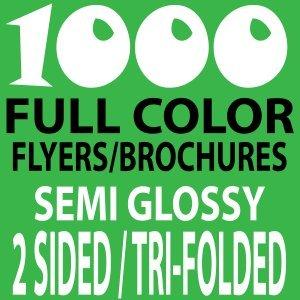 1000 8x11 Tri-Folded Brochures
