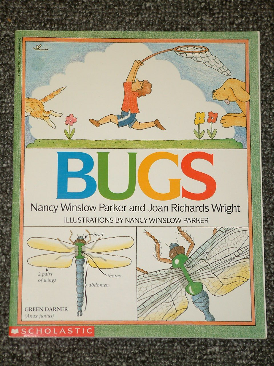 Bugs by Nancy Winslow Parker and Joan Richards Wright