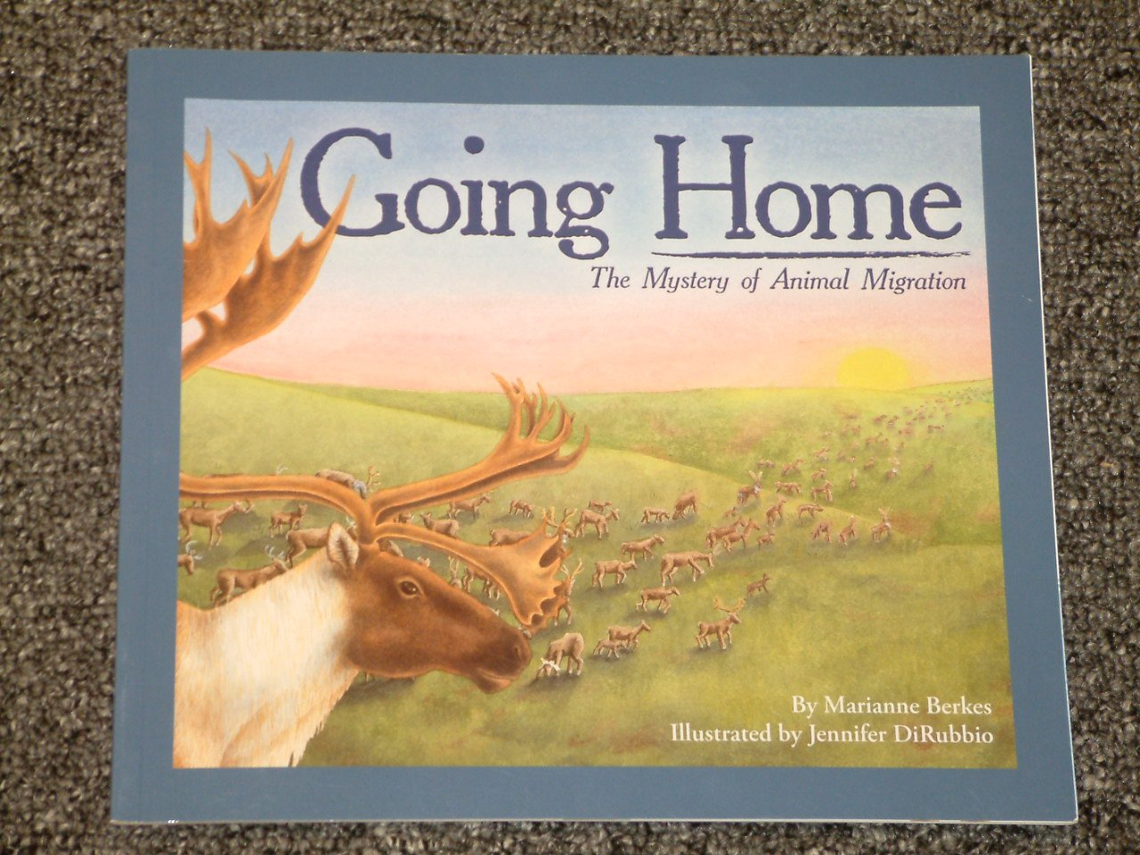 Going Home The Mystery of Animal Migration by Marianne Berkes