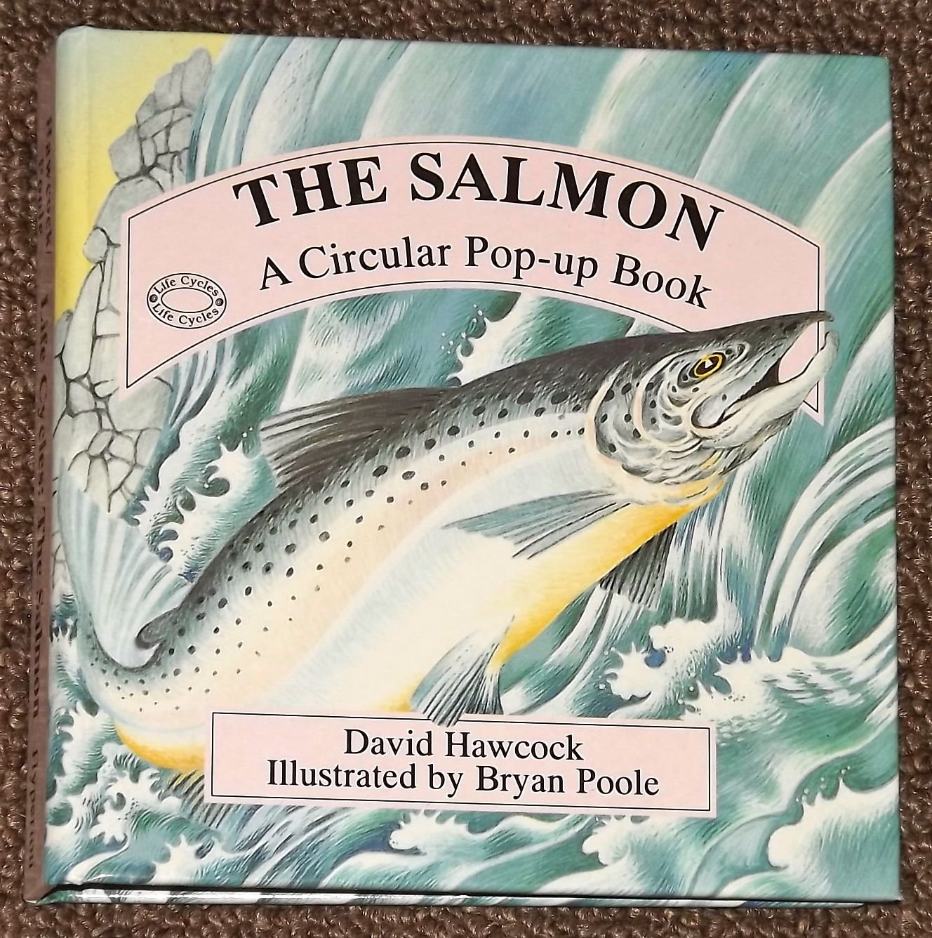 The Salmon A Circular Pop-Up Book by David Hawcock 1995