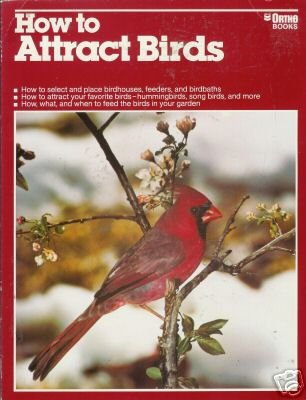 HOW TO ATTRACT BIRDS Chevron Ortho