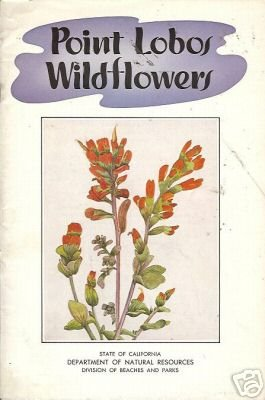 POINT LOBOS WILDFLOWERS By Ken Legg 1954