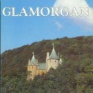 Shire County Guide GLAMORGAN Hilling 1991