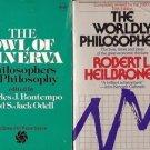 THE WORLDLY PHILOSOPHERS THE OWL OF MINERVA PHILOSOPHERS ON PHILOSOPHY