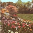 NEW  ILLUSTRATED ENCYCLOPEDIA OF GARDENING 1967