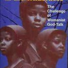 SISTERS IN THE WILDERNESS THE CHALLENGE OF WOMANIST GOD