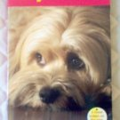 Book: Benji! Off The Leash by Joe Camp good condition