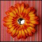 Sunfire Orange Rhinestone Gerbera Daisy Clip