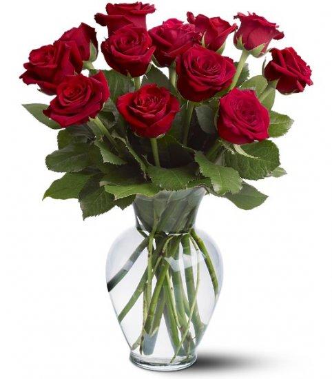 Freesh Sofia Roses