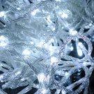 10M 100 LED Xmas Optical String Flashing Light  White