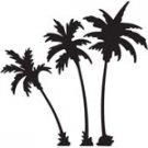 palm002