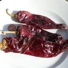 100 ANAHEIM PEPPER seeds -Capsicum Annum Chili