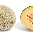 20 CANTALOUPE seeds-MUSKMELON - Cucumis Melo