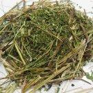20g Pedicularis Procera Dried Herb- Giant Lousewort / Rocky Mountain Betony