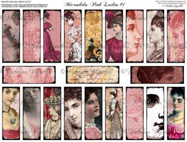 Microslides Pink Ladies #1