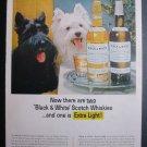 Black & White Scottish Terrier Westie Dog Vtg Photo Ad