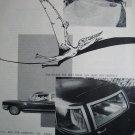 1987 GSD Tracker Pterodactyl Dinosaur #Skateboard Ad