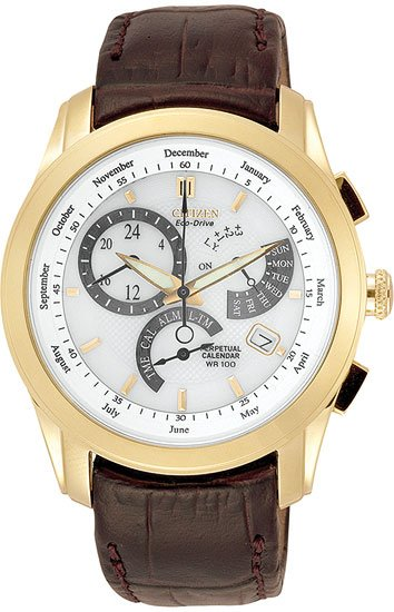 Citizen BL8002-08A Gold Tone 8700 Calibre Perpetual Calendar Strap Men's