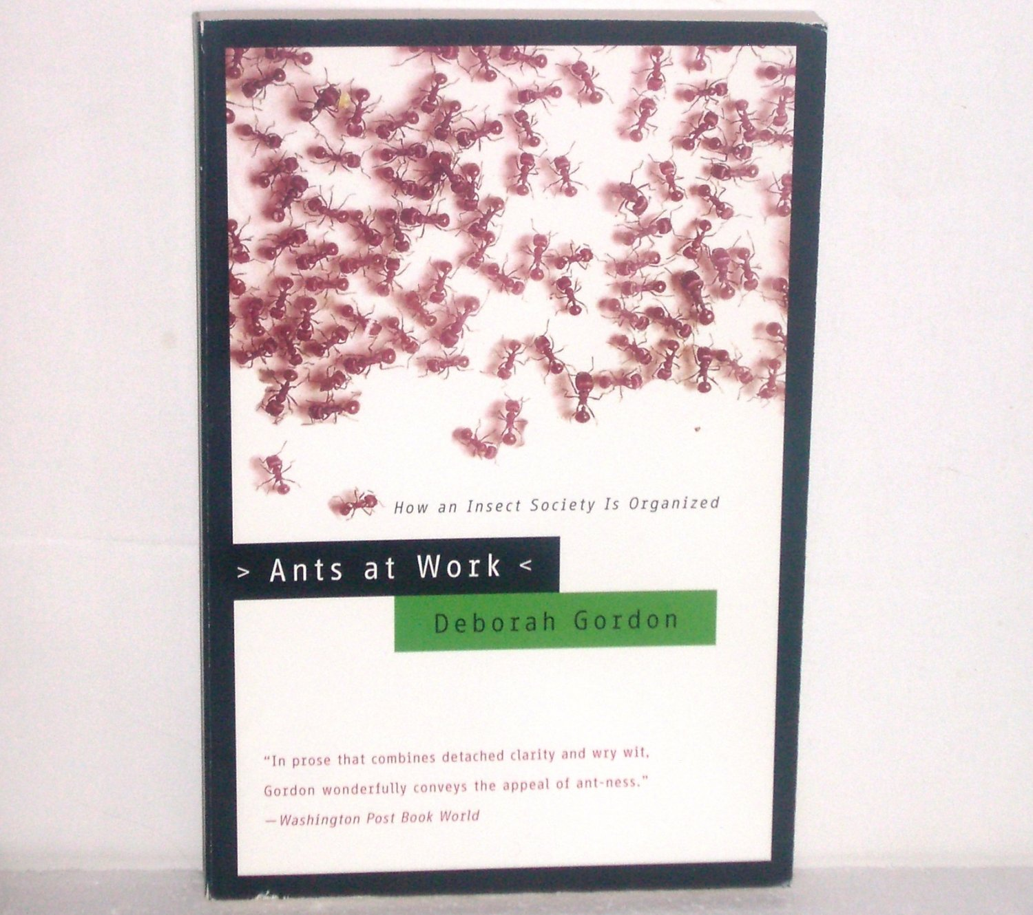 Ants at Work: How an Insect Society is Organized by Deborah Gordon Science and Evolution 2000