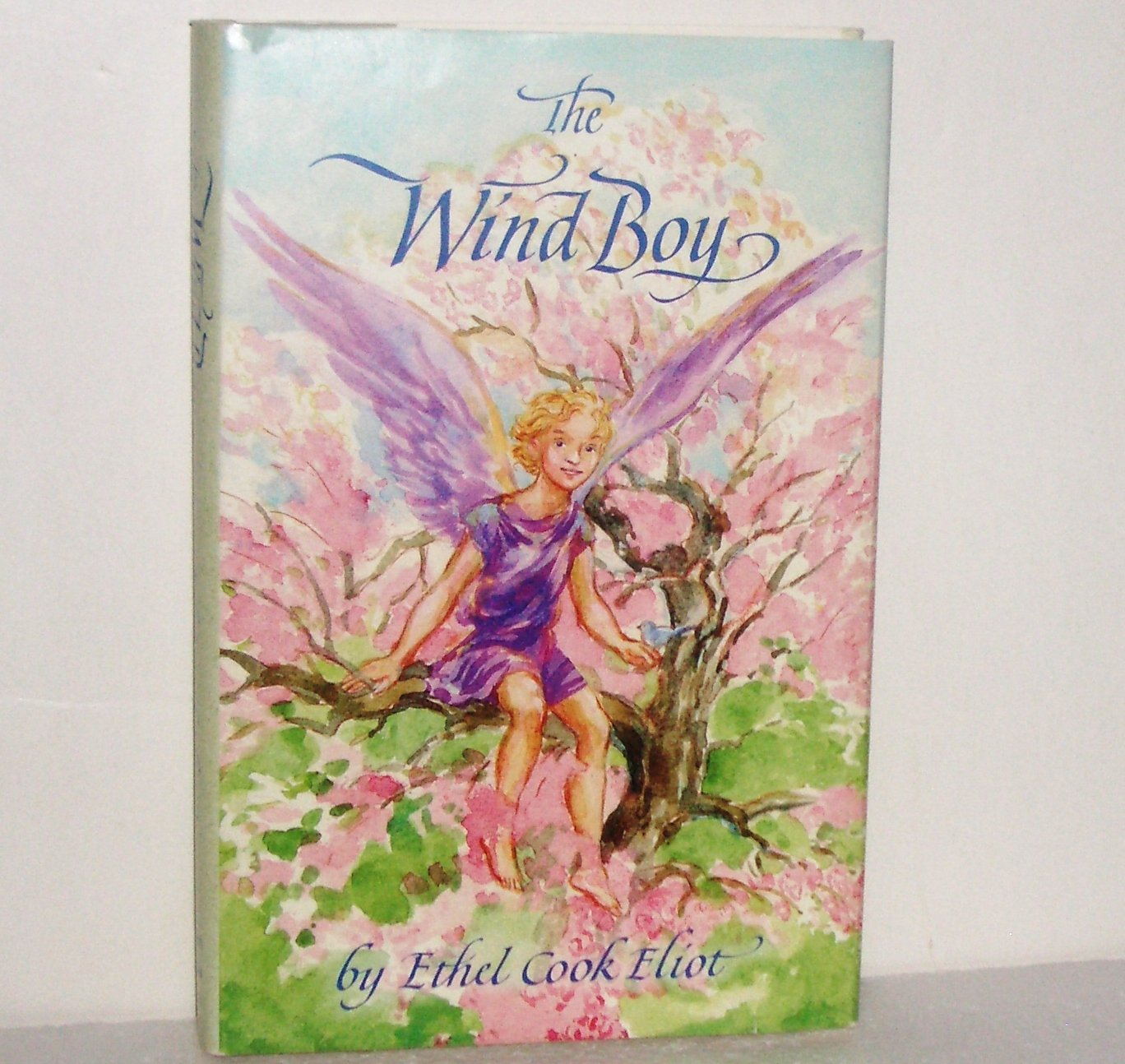 The Wind Boy by ETHEL COOK ELIOT Hardcover with Dust Jacket 1996 Childrens Book