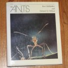 The Ants by Bert Hölldobler 1990 Hardcover with Dust Jacket