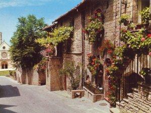 Postcard PC Assisi ST. Francis Basilica Upper CHurch Italy