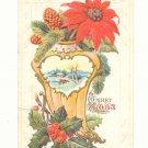 PINE CONES POINSETTIA HOLLY CHRISTMAS Vintage POSTCARD 1916   67