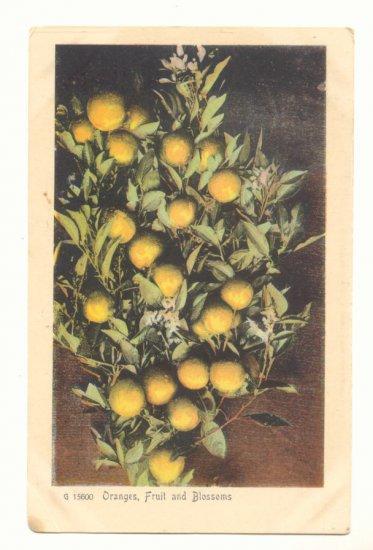 ORANGES, FRUIT AND BLOSSOMS, VINTAGE ANTIQUE POSTCARD   71