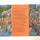 LEGEND OF THE SPANISH MOSS, VINTAGE LINEN POSTCARD   79