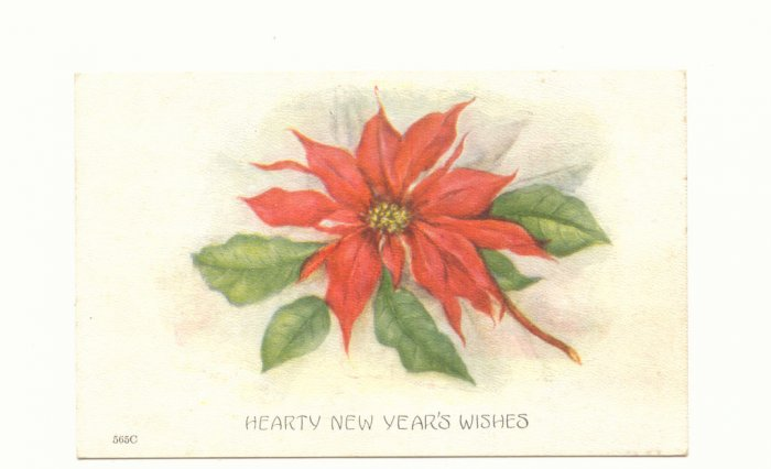 HEARTY NEW YEAR, POINTSETTIA, UNUSED VINTAGE POSTCARD  91