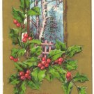CHRISTMAS, VINTAGE POSTCARD, HOLLY, WINTER SCENE  119