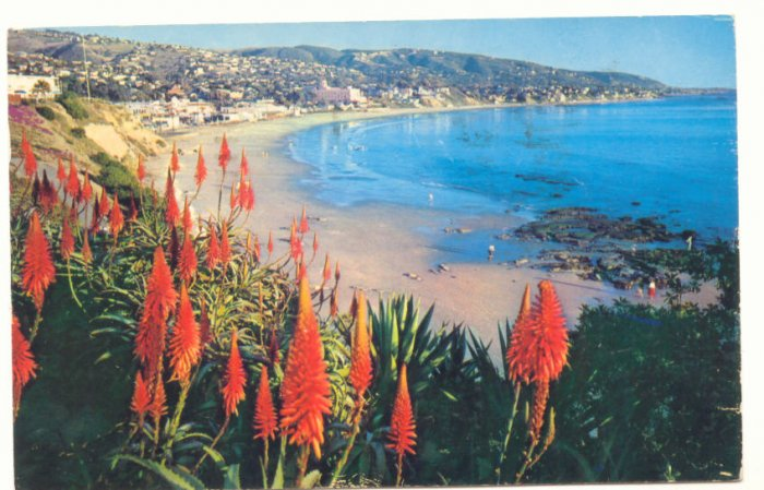 LAGUNA BEACH, CALIFORNIA VINTAGE CHROME POSTCARD  #173