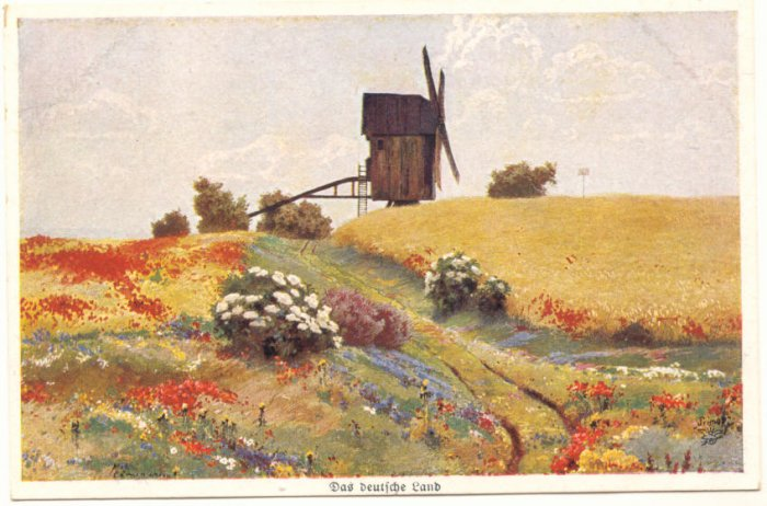 WINDMILL, FLOWER FIELD SCENE, UNUSED VINTAGE POSTCARD #201