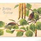 BIRTHDAY GREETING, BRANCH, BEETLES, VINTAGE POSTCARD   #217