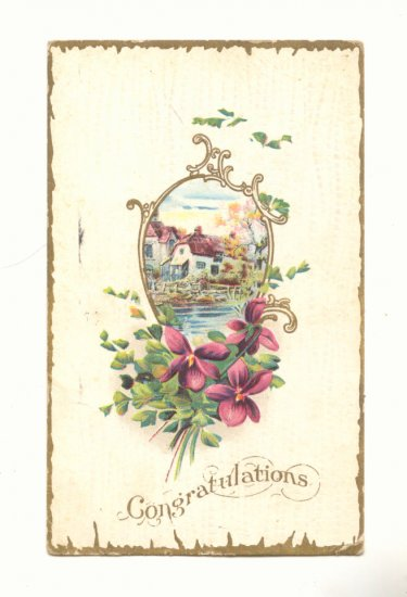 CONGRATULATIONS, WATERFRONT ESTATE, VIOLETS 1911  POSTCARD #282