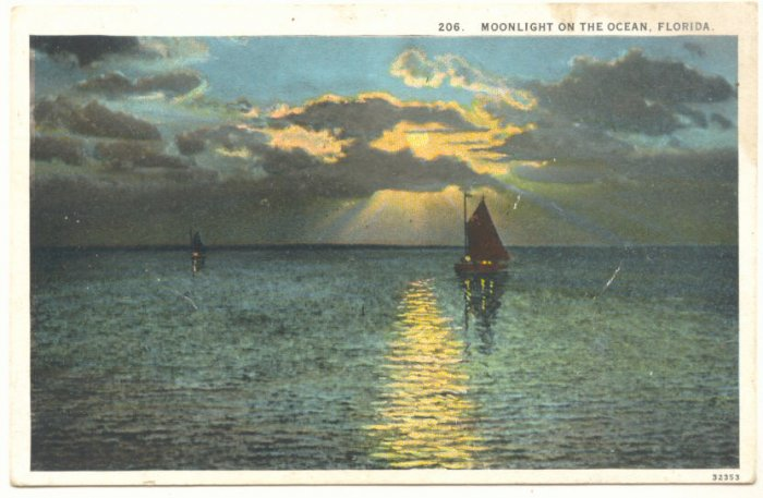 MOONLIGHT ON THE OCEAN, FLORIDA, SAILBOAT POSTCARD   #316