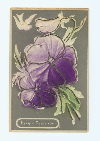 HEARTY GREETINGS HEAVY EMBOSSED PANSY Vintage Postcards   #336