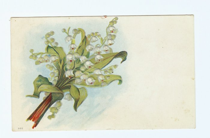 BOUQUET OF LILIY OF THE VALLEY VINTAGE 1911 POSTCARD  #337
