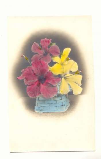 TINTED REAL PHOTO POSTCARD HIBISCUS IN A BASKET VINTAGE   #340