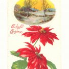 JOYFUL CHRISTMAS WINTER SCENE POINTSETTIA 1914 POSTCARD    #347